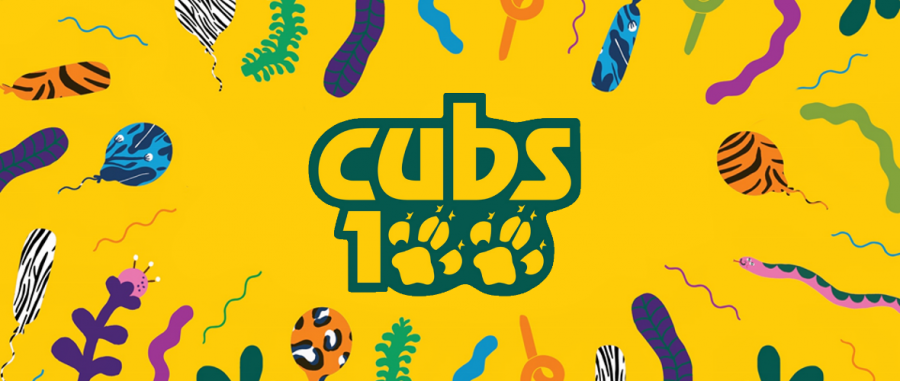 View from the Vicarage – Cubs Centenary